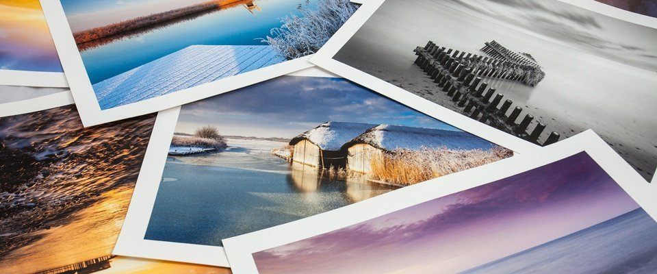 Best Printers for Art Prints & Artists Guide